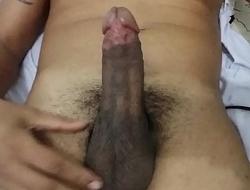 Solteiro RJ